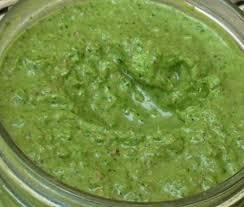 Indian Sauce Recipes
